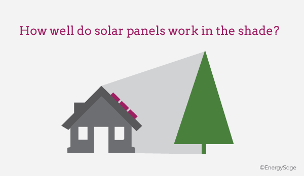 Do Solar Panels Work in the Shade? | EnergySage
