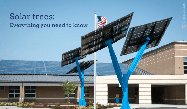 Solar Trees: Product Overview, Pricing and Review | EnergySage